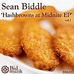 Sean Biddle Hashbrowns At Midnite EP, Vol.2