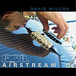 David Wilcox Airstream