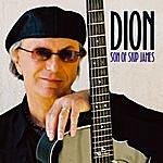 Dion Son Of Skip James