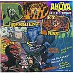Akoya P.D.P. (President Dey Pass)