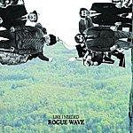 Rogue Wave Like I Needed (Single)