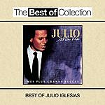 Julio Iglesias Ma Vie: Mes Plus Grands Succès