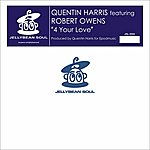 Robert Owens 4 Your Love (4-Track Maxi-Single)