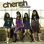 Cherish Amnesia (2-Track Single)
