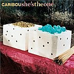 Caribou She's The One (3-Track Maxi-Single)