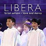 Brian Wilson Love & Mercy