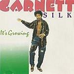 Garnett Silk It's Growing
