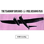 The Teardrop Explodes Peel Sessions Plus (BBC Session)