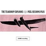 The Teardrop Explodes Peel Sessions Plus (Live) (BBC Version)