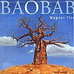 Wagner Tiso Baobab