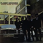 The Flamin' Groovies Shake Some Action
