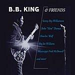B.B. King B.B. King & Friends