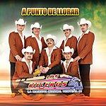 Los Rieleros Del Norte A Punto De Llorar (Single)
