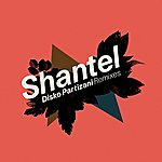 Shantel Disko Partizani Remixes (3-Track Single)