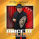 Aniceto Molina El Tigre Sabanero (2-Track Single)