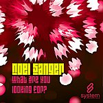 Noel Sanger What Are You Looking For? (Maxi-Single)