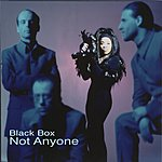 Black Box Not Anyone (4-Track Remix Maxi-Single)
