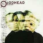 Godhead Evolver