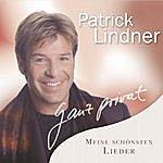 Patrick Lindner Ganz Privat