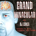Grand Vanacular Entering The Brain: Cerebral Meltdown