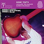 Sonic Youth J' Accuse Ted Hughes/Agnes B Musique