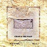 Mel Chaos & The Wasp