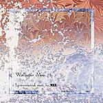 Mel Wallpaper Music, Vol.5