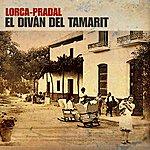 Vicente Pradal Federico Garcia Lorca: El Diván Del Tamarit