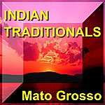 Mato Grosso Indian Traditionals