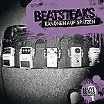 Beatsteaks Kanonen Auf Spatzen - 14 Live Songs