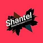 Shantel Disko Partizani Remixes (3-Track Maxi-Single)