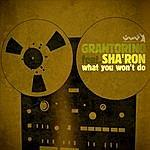 Gran Torino What You Won't Do (6-Track Remix Maxi-Single)