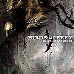 Birds Of Prey Weight Of The Wound (Parental Advisory)