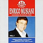 Enrico Musiani Madonnina Dai Riccioli D'Oro: 16 Grandi Successi Di Enrico Musiani, Vol.1