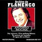 Antonio Molina Archivo De Flamenco, Vol.12