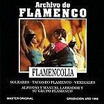 Alfonso Archivo De Flamenco, Vol.18 (Flamencolia)