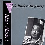 Little Brother Montgomery Blues Masters, Vol.7
