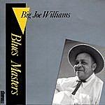 Big Joe Williams Blues Masters, Vol.2