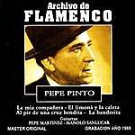 Pepe Pinto Archivo De Flamenco, Vol.9
