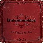 Babyshambles Oh What A Lovely Tour: Babyshambles Live