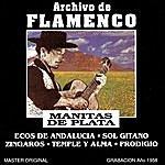 Manitas De Plata Archivo De Flamenco, Vol.8