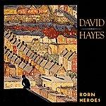David Hayes Born Heroes