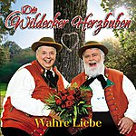 Die Wildecker Herzbuben Wahre Liebe
