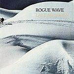 Rogue Wave Lake Michigan/Show