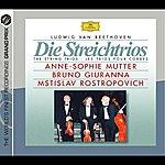 Anne-Sophie Mutter Ludwig Van Beethoven:  Die Streichtrios (The String Trios/Les Trios Pour Cordes) (2 CD Set)