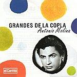 Antonio Molina Grandes De La Copla 8