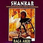 Shankar Raga Aberi