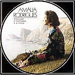 Amália Rodrigues Folclore À Guitarra E À Viola