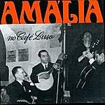 Amália Rodrigues No Café Luso