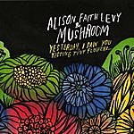 Alison Faith Levy Yesterday, I Saw You Kissing Tiny Flowers